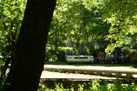 Galeriebild 13
