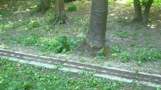 Dampfbahn Leverkusen (DBL) Mai Fahrtag 2011 (HD) (11:46)